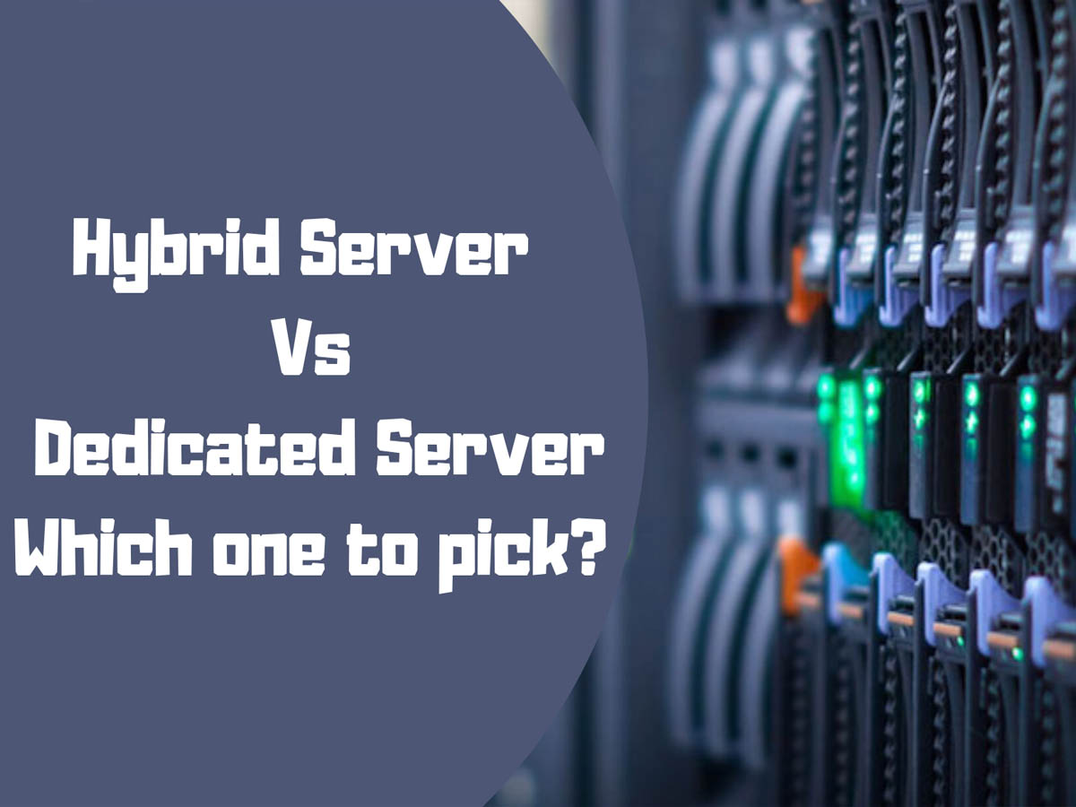 The Difference between SSD Hosting and HDD Hosting